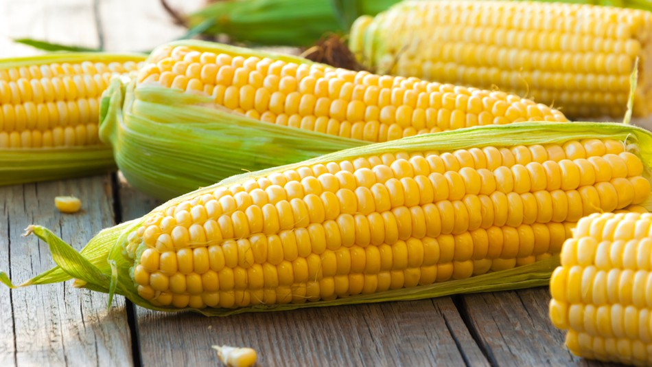 An image of some Corn